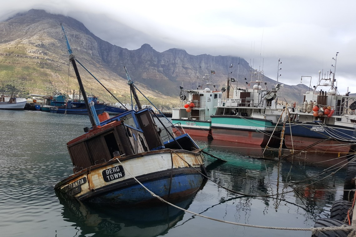 1. Day 1 - Explore Hout Bay Harbour